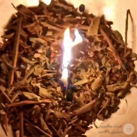 سوزاندن مریم گلی بذر آبی