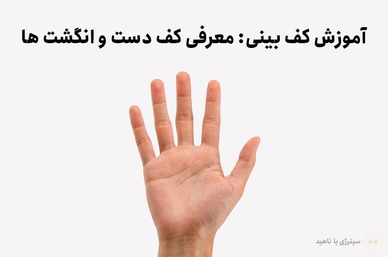 آموزش کف بینی: معرفی کف دست و انگشت ها